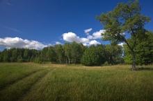 Павлово пейзаж